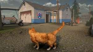 Em Peace Island, você é um gato em mundo de realidade virtual