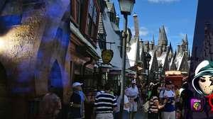 Zangado passeia pelo mundo de Harry Potter, na Califórnia