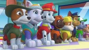 Nicklelodeon lança Patrulha Canina para PlayStation e Xbox